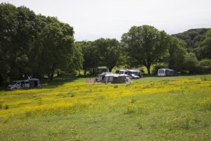 Camping in Upper Meadow