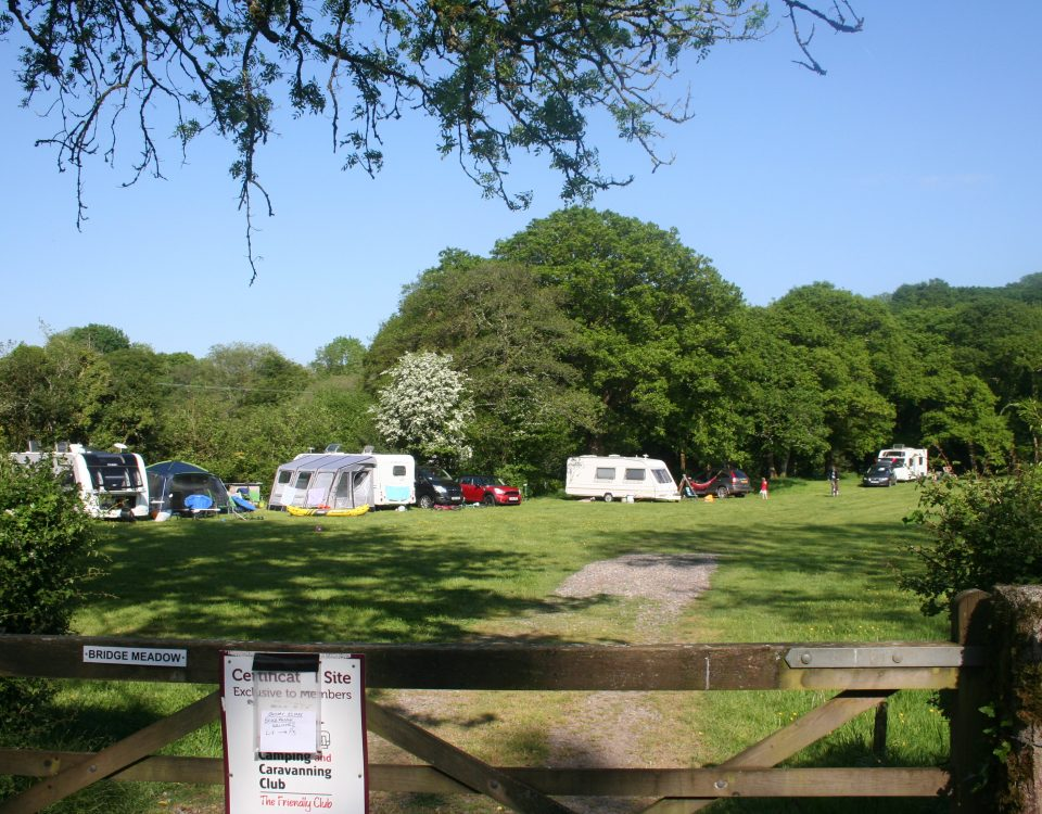 Campers enjoying the good weather at Bridge Meadow, Cresswell Barn Farm Campsite Pembrokeshire